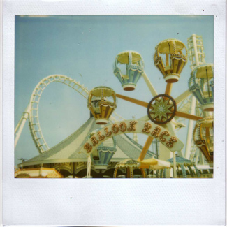 polaroid_wildwood